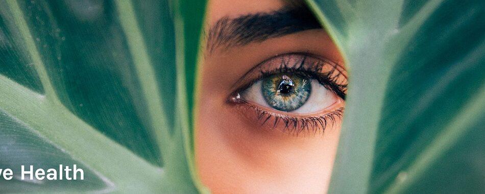 مشکلات چشم و بینایی در فصل پاییز
