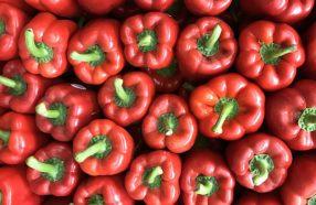 خواص فلفل دلمه قرمز برای کاهش فشار چشم و پیشگیری از گلوکوم: پپروناتا بخورید!